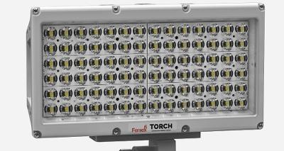 Torch Pole Light